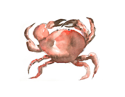 Red Hot Crab